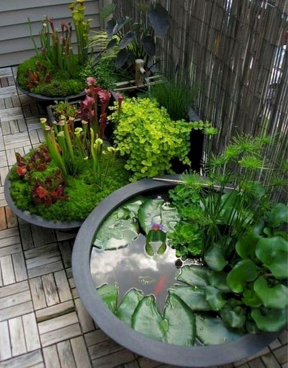 Backyard Landscaping Ideas: Beautiful Small Ponds