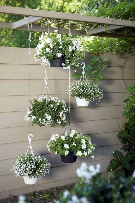 Backyard Landscaping Ideas: Chic Hanging Planter