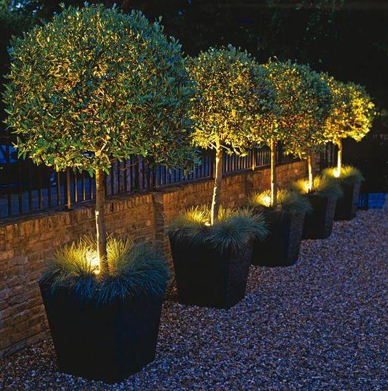 Backyard-Lighting-Ideas-17