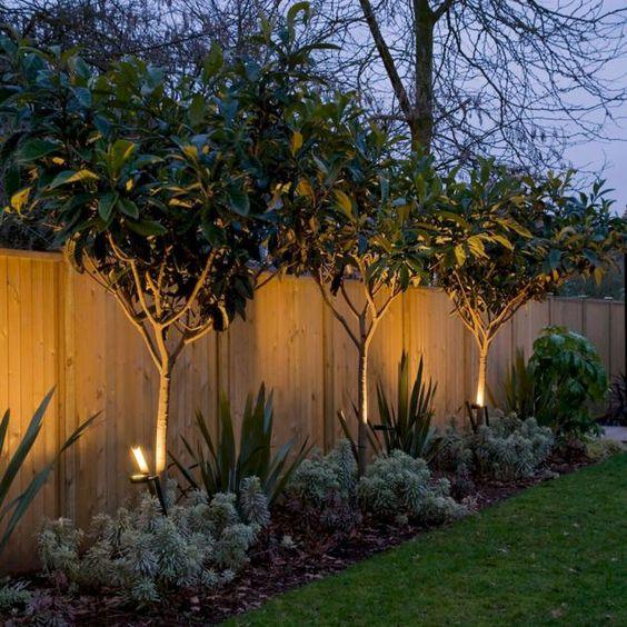 Backyard Lighting Ideas 18