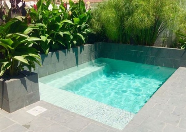 small swimming pool idea feature