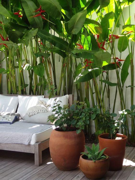 Tropical Backyard Ideas: Cozy Fresh Decor