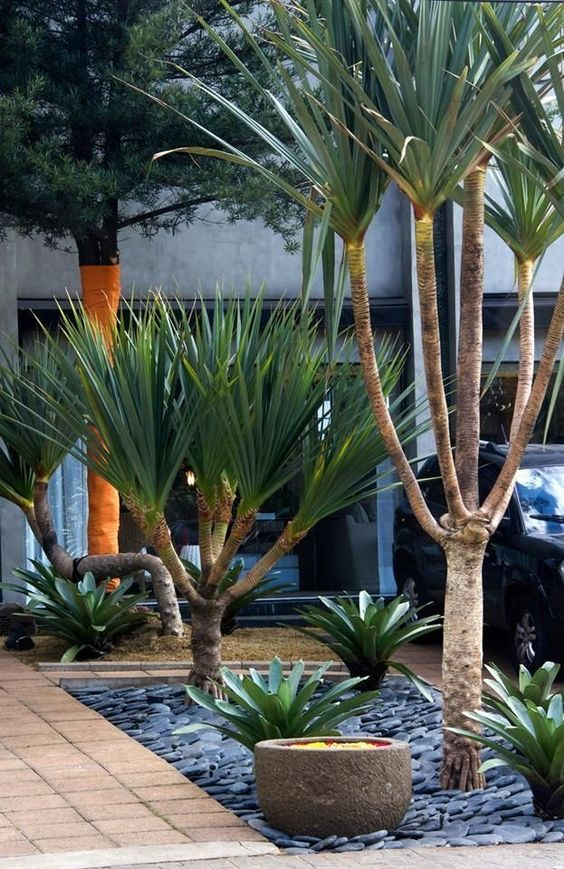 tropical backyard ideas 14