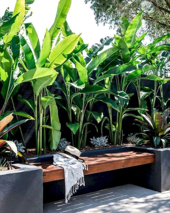 tropical backyard ideas 18