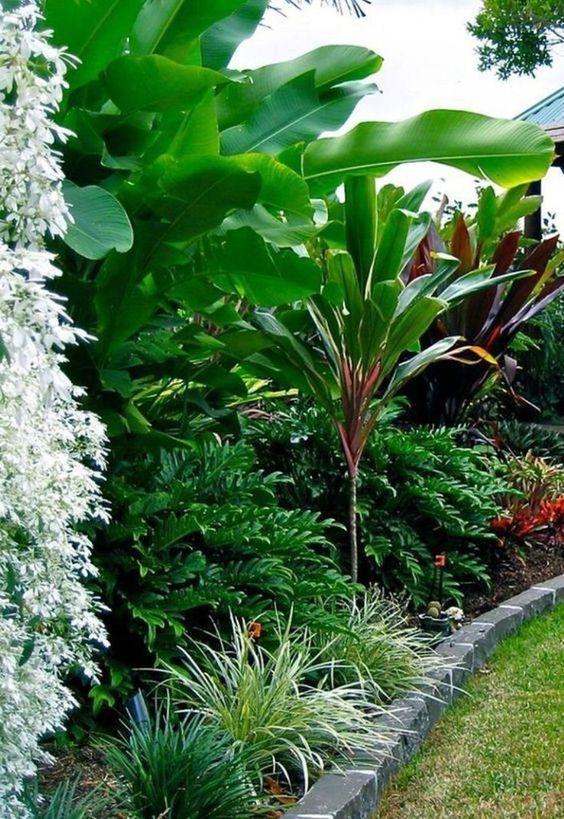 tropical backyard ideas 19