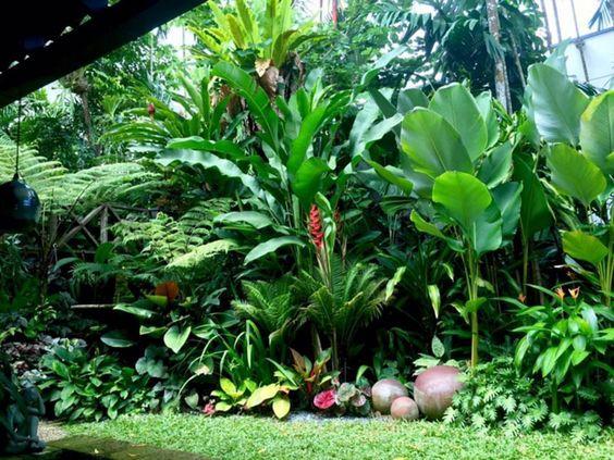 tropical backyard ideas 20