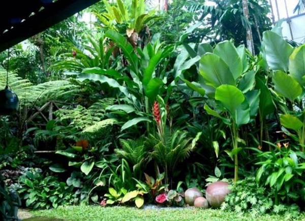 Tropical Backyard Ideas: 20+ Beautifully Refreshing Decors ... on Tropical Backyard  id=68095