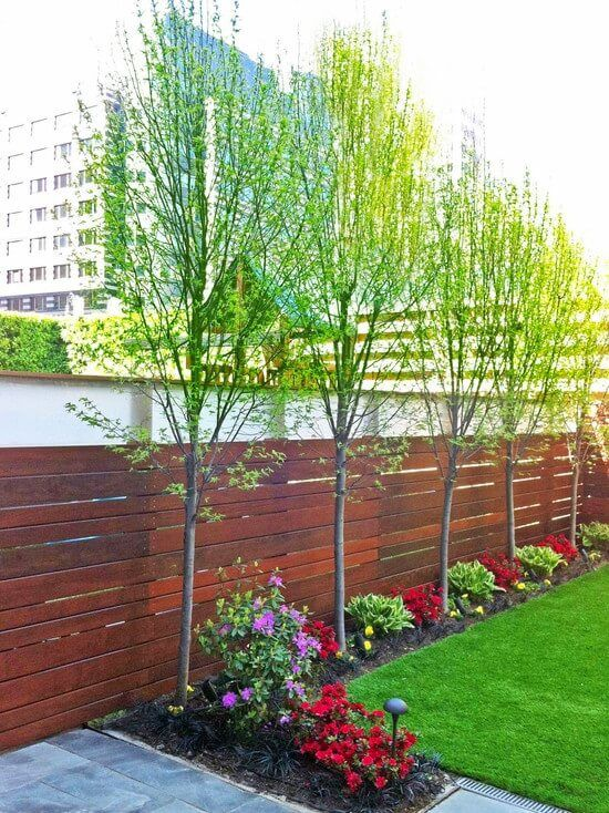 DIY Fence Landscaping: Simple Earthy Decor