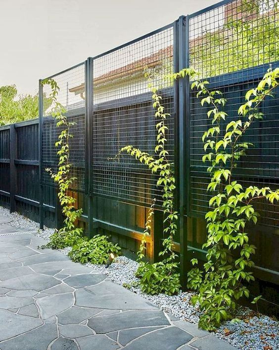 DIY Fence Landscaping 17