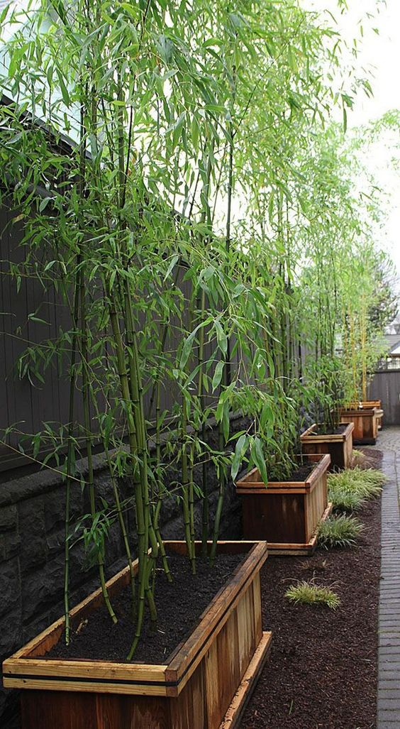 DIY Fence Landscaping: Asian Inspired Decor