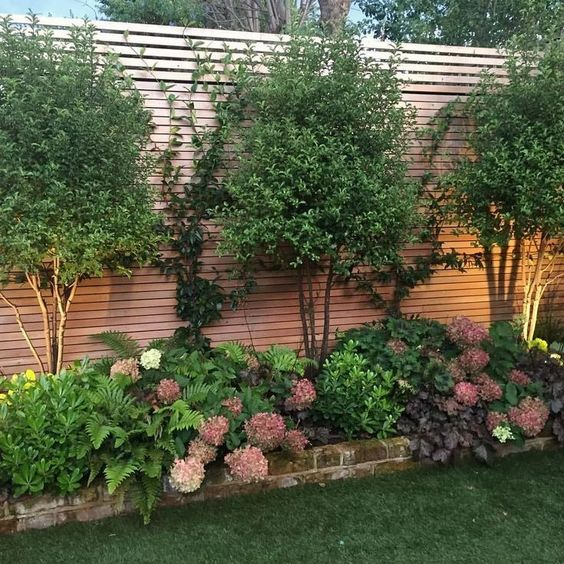 DIY Fence Landscaping 6