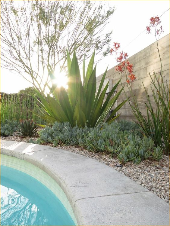 Swimming Pool Landscaping Ideas: Stylish Earthy Decor