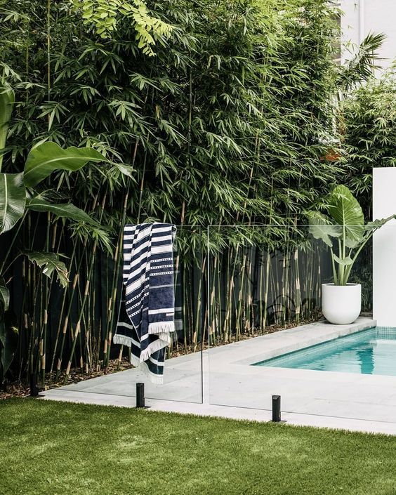 Swimming Pool Landscaping Ideas: Captivating Tropical Decor