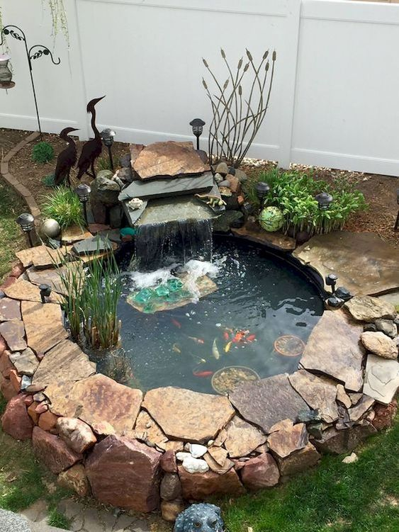 DIY Backyard Pond Ideas 10