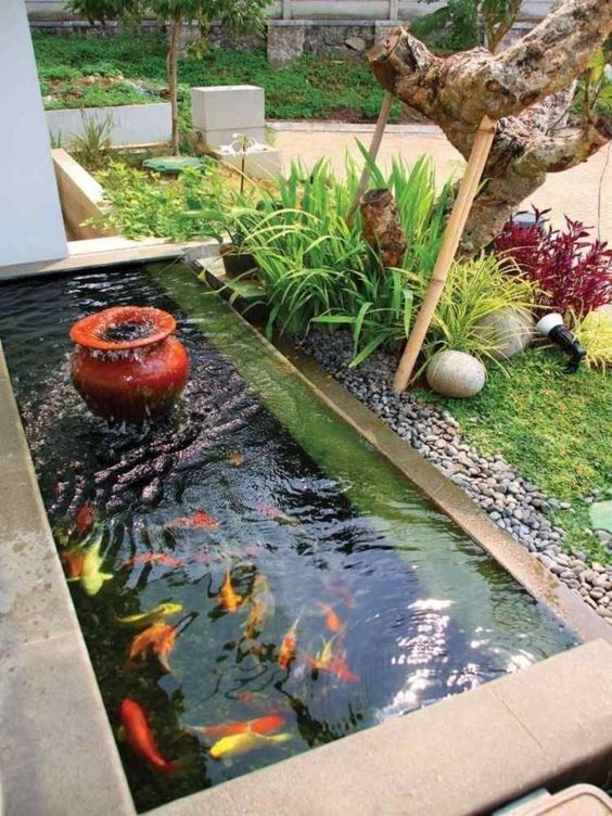 DIY Backyard Pond Ideas 15