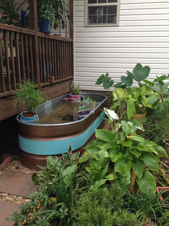 DIY Backyard Pond Ideas 21