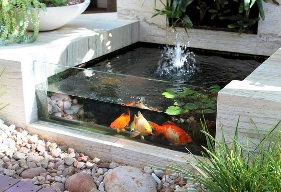 DIY Backyard Pond Ideas 23