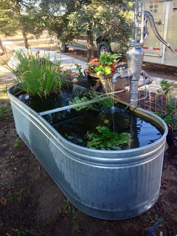 DIY Backyard Pond Ideas: 23+ Beautiful Designs to Steal Now