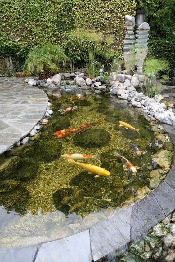 DIY Backyard Pond Ideas 8