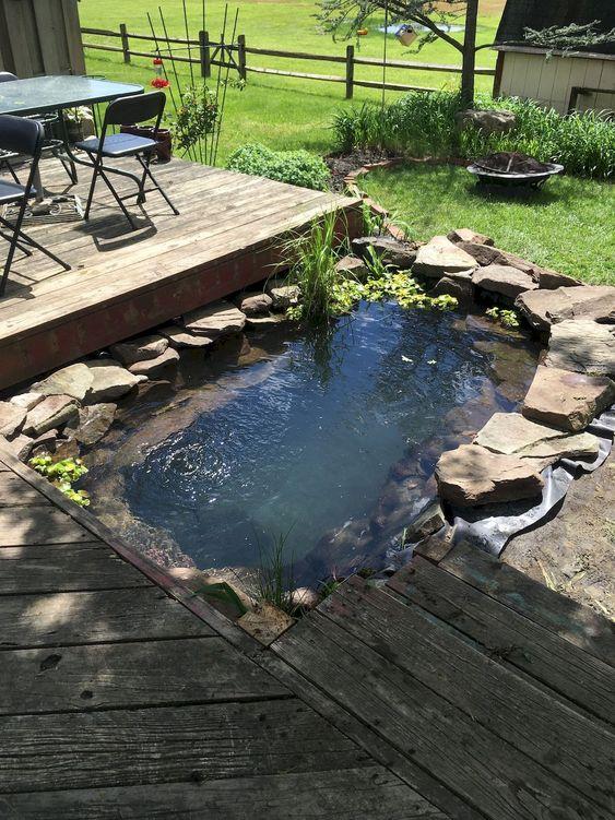 DIY Backyard Pond Ideas 9